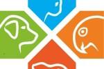 Logo einzeln290